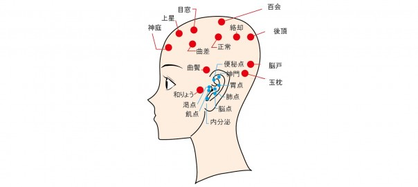 頭ツボ図22